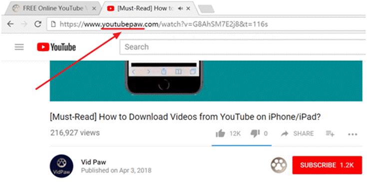VidPaw Change URL